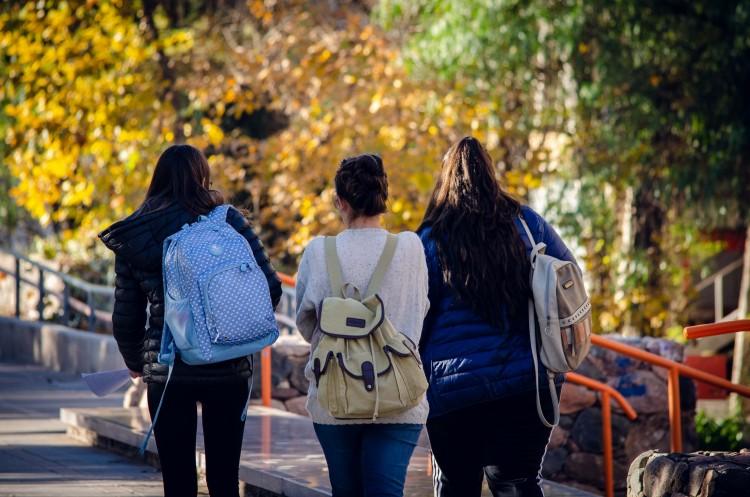 """Tutorías del módulo a distancia """"Ser Estudiante de la UNCuyo""""  (Ingreso 2020)"""