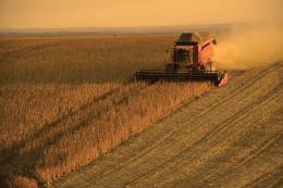 Extractivismo(s), agronegocios y destrucción ambiental