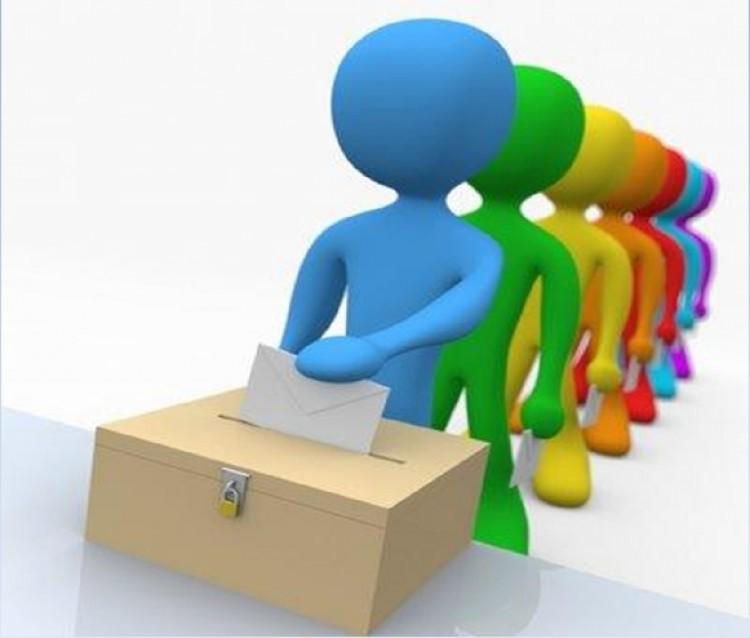 Lo votado pensado