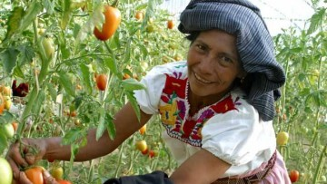 """""""Feminismos y Soberanía Alimentaria: voces comunitarias en defensa de la vida''"""